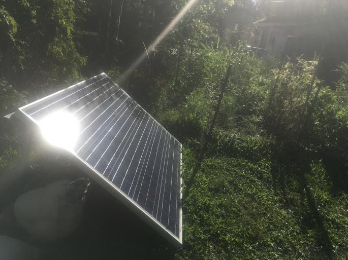 Conranimal Solar